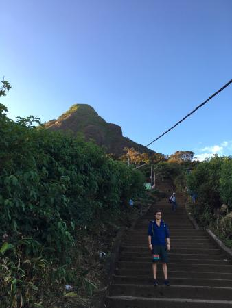Hatton, Sri Lanka: It's hard.. But hey, the old barefoot lady's walk up there. Everyone can do it, just take your t