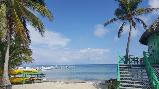 Blackbird Caye Resort: 20160113_134415_large.jpg
