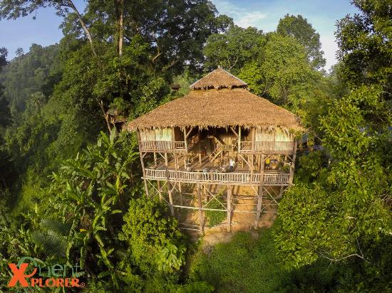 tree house hideaway updated 2019 specialty b b reviews chiang dao rh tripadvisor com