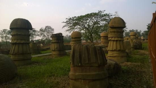Dimapur, الهند: Rajbari Kachari Ruins
