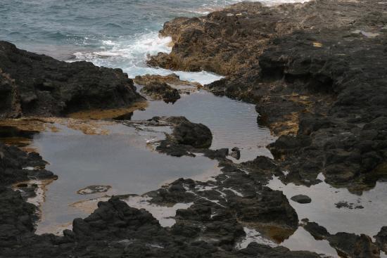 Foto de Phillip Island