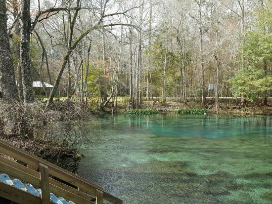 High Springs, FL: Ginnie Springs