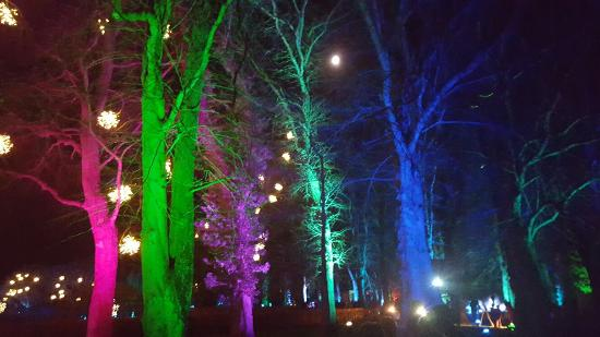 The Alnwick Garden: 20151220_172058_001_large.jpg