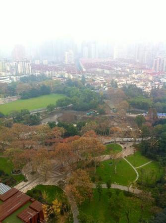 上海中山公園照片
