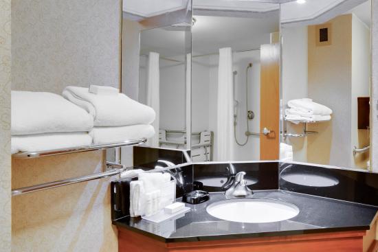 Hampton Inn Pittsburgh Greentree: Accessible Bathroom