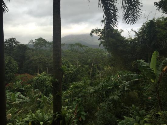Lost Iguana Resort & Spa: photo6.jpg