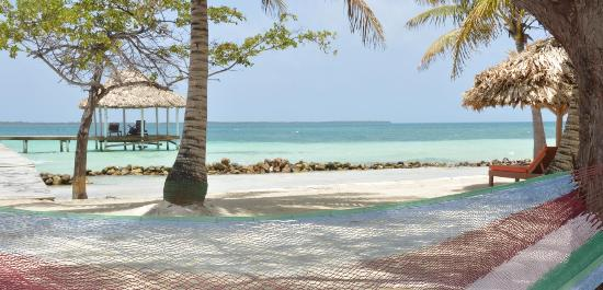 Coco Plum Island Resort : Hammocks on the beach