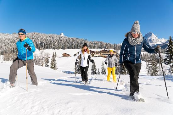 Hotel ...mein Neubergerhof: Geführte Schneeschuhwanderungen