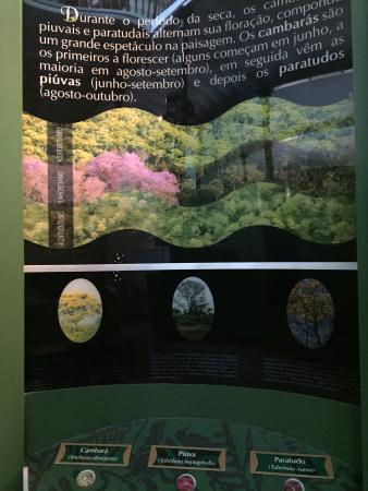 Estacao Natureza Pantanal: photo5.jpg