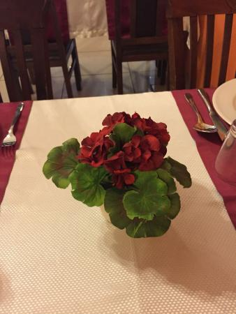 SWAAD Indian Restaurant: Rose