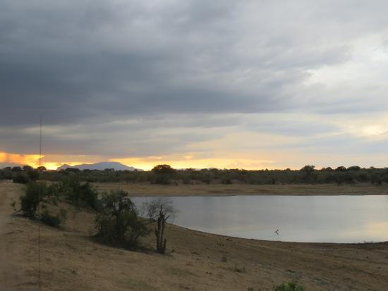Foto de Ngala Private Game Reserve
