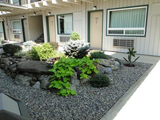Konkolville Motel: Courtyard