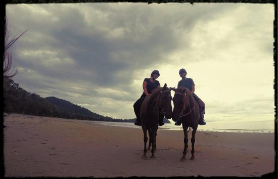 Cape Tribulation, Australien: One of the best excursions of our 6 months travelling around the world!