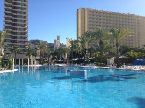 Levante beach picture of sol pelicanos ocas benidorm - Hotels in alicante with swimming pool ...