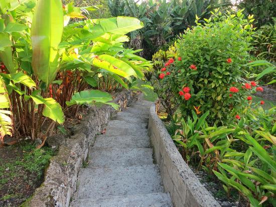 South Seas Private Hotel Photo