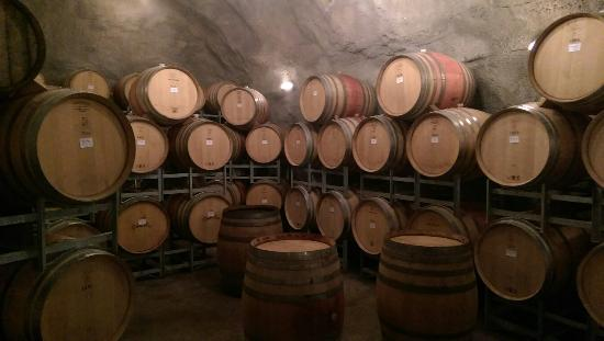 Appellation Central Wine Tours 이미지