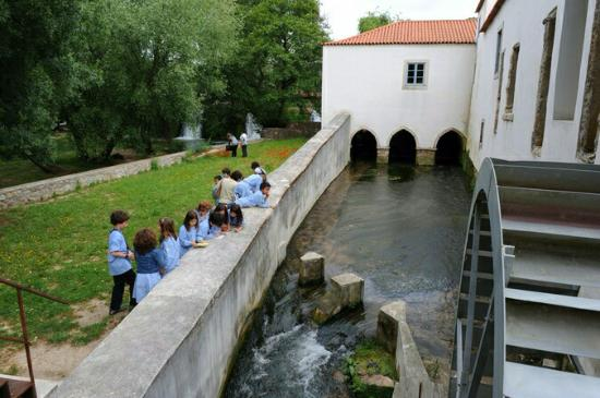 Mimo - Museu Da Imagem Em Movimento