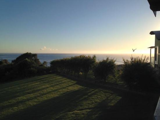 NRMA Merimbula Beach Resort and Holiday Park: Morning view from Oceanview Condo