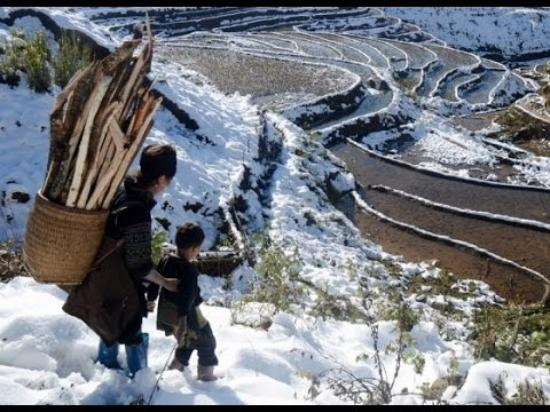 Asia Top Travel: Sapa in snow season - Jan 2016. No need to go Europe to see snow