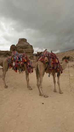 Petra Photo