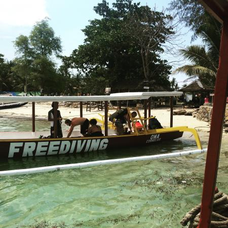 Oceans 5 Dive Resort: Dive Resort Oceans 5 offers alo freediving