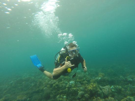 Aqua Dive Paradise Photo