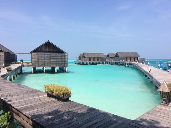 甘格西島度假村照片