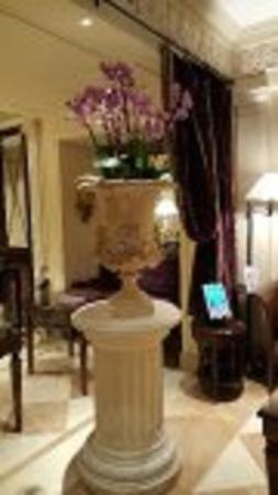 Gambar Hotel des Grands Hommes