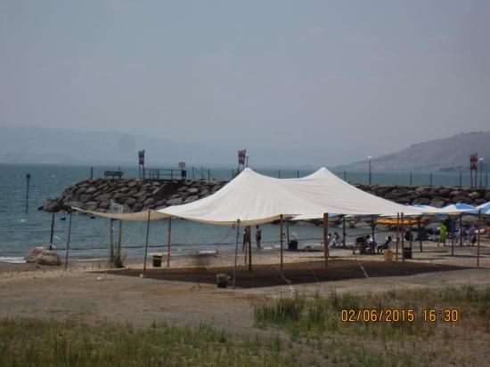 Tanureen: Beach of the Sea of Galilee, not far from the restaurant