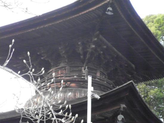 Kasugai