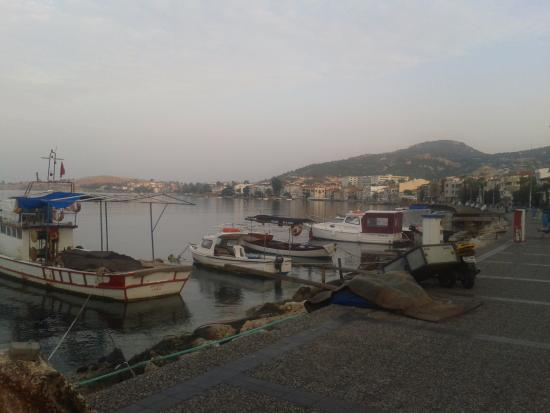 Foto de Foca Erguvan Hotel