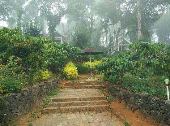 Landscape - Dhanagiri Home Stay Photo