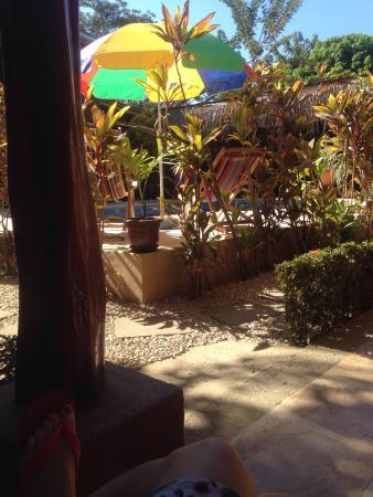 Samara Palm Lodge照片