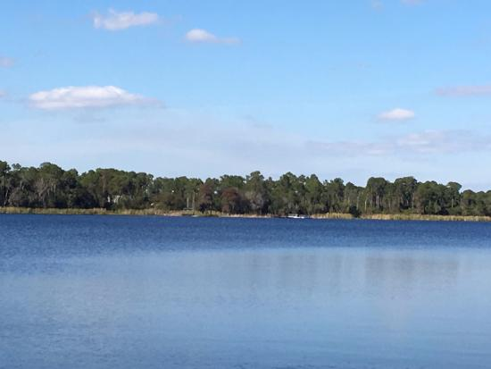 Bahama Bay Resort & Spa Orlando: View from Fishing Dock