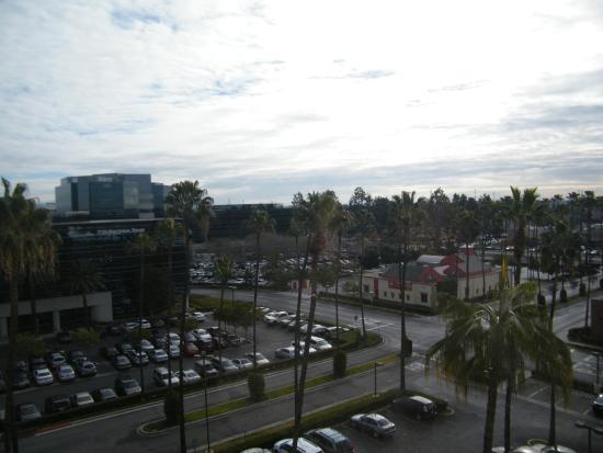 La Palma Foto