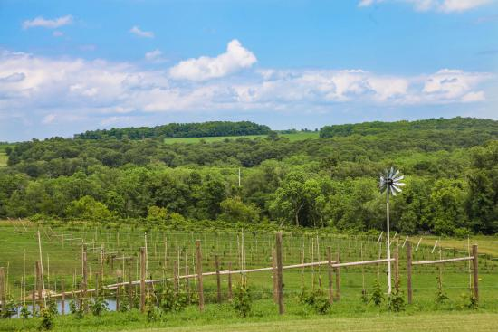 Hawk's Mill Winery