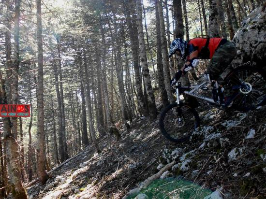Ainos Bikes: downhill Ainos