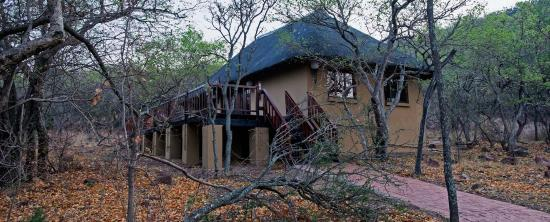 Pictures of Izapa Bush & Game Lodge - Roodeplaat Photos
