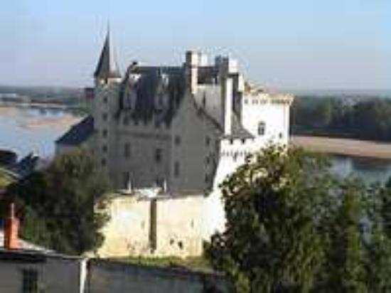 Fontevraud-l'Abbaye, Frankrike: One of our outings : Montsoreau castle