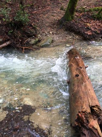 Be prepared to cross water on the Papoose Pass Trail