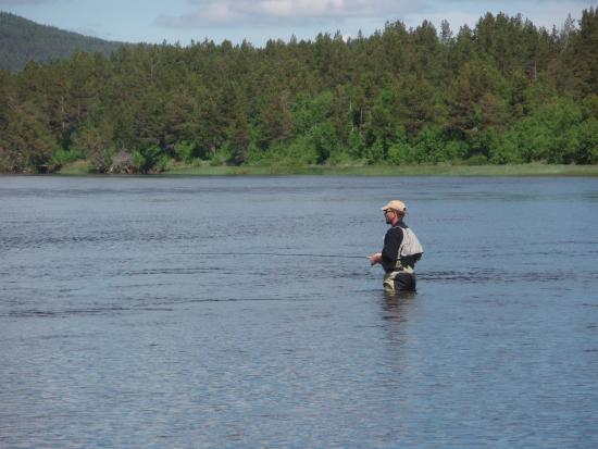 Roste Hyttetun og Camping: Fluefiske i Glomma