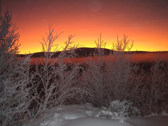 Roste Hyttetun og Camping: Hummelfjell i vintersol