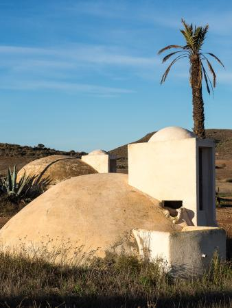 Landscape - Cortijo El Campillo Photo