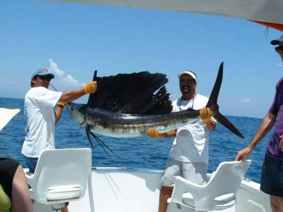 El Torito Sportfishing