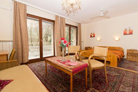 Budavar Bed & Breakfast: Superior Room