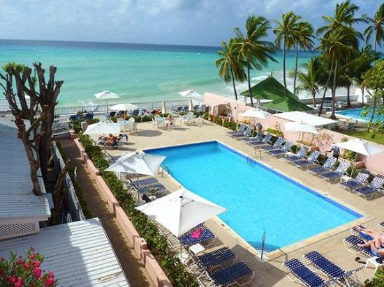 Erfly Beach Hotel Updated 2018 Reviews Price Comparison Maxwell Barbados Tripadvisor