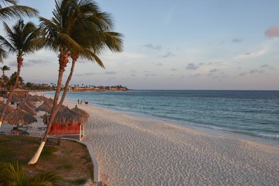 Divi aruba all inclusive all inclusive resort reviews - Divi all inclusive ...