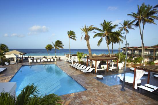 Divi aruba updated 2017 prices reviews photos all - Divi aruba and tamarijn aruba ...