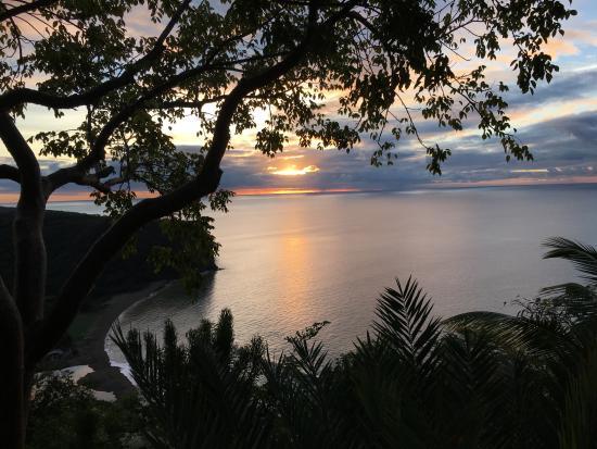 Nature's Paradise Photo