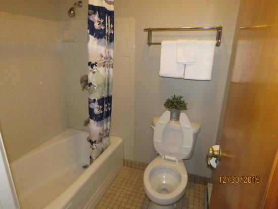 Oak Lawn, IL: Single Room Bathroom